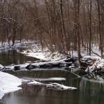 Cold Snowy Winter